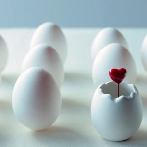 排卵と卵子そして卵子の質