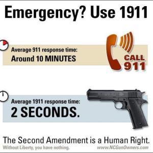 【画像】米国で暴動起きてるけど、、、正直この全米ライフル協会会長の名言って一理あるよな 「911に電話しても解決に10分かかるが・・・」