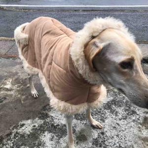 ナイラのコートを作成