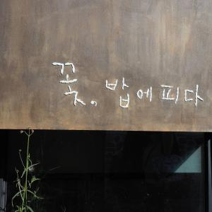 韓国で身体に良さそうなオーガニック韓定食が食べられるお店♪