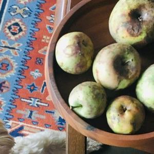 実家のりんごでタルトタタン