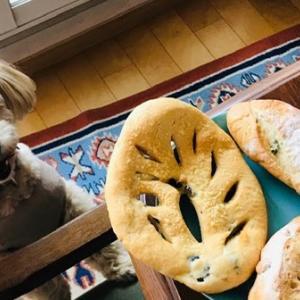 たまにはパン
