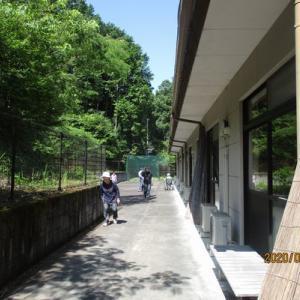 6/29 散歩