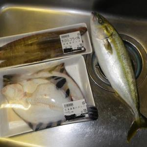 スーパーのお魚購入!!!
