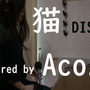 週末Acro.今週はAco.が 猫/DISH// 歌いましたん。