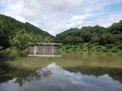 雨の後で濁りもあるのに@増沢池-その1-