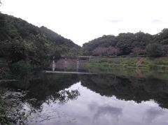 雨が降りそうなので早上がり@増沢池