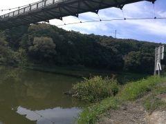 疲れていても好天で通院後に釣行@増沢池-午前の部-