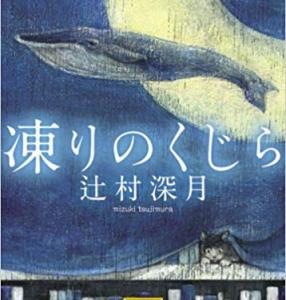 『凍りのくじら』辻村 深月読みました。