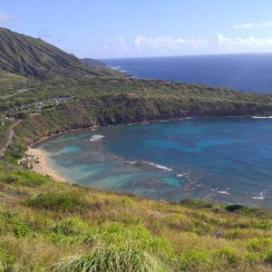 ハワイで新規感染者がゼロに。ハワイ旅行に行けるのはいつ?