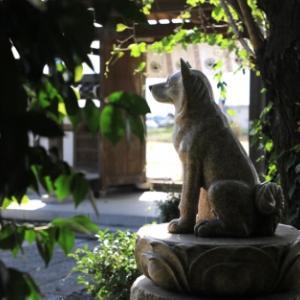 【犬狼物語 其の四百二】 群馬県太田市 普門寺の「忠犬もん」の像