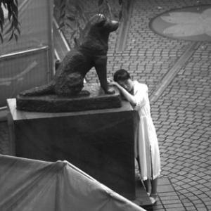 【犬狼物語 其の三百八十四】 忠犬ハチ公像が建立されてから71年