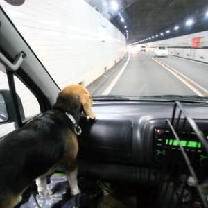 最近のあおり運転報道で考えた、危ない正義感