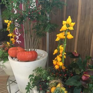 ベイクォーターのハロウィン花飾り