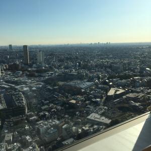 セルリアンタワー東急ホテル 40階からの眺め