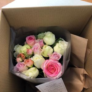 Stay Home Roses 2回目届きました~(^^♪