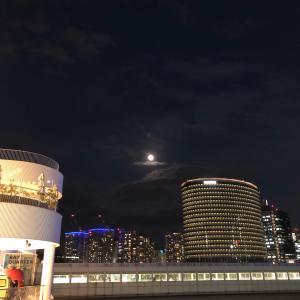 美しい月夜の帰り道、、、満月前…