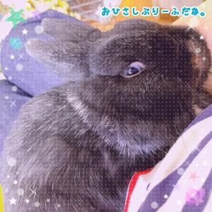 ☆たなばた☆