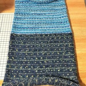 思うところあって編み直し