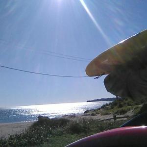 最高の海日和でした