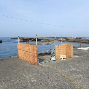 今年の潜り漁が解禁となりました。