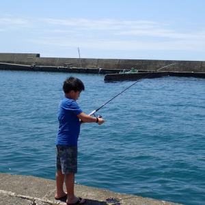 港の中での釣り