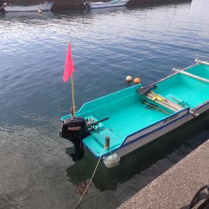 テッカイ根の調査潜水