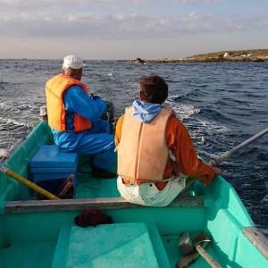 夕凪の引き釣り、大漁でした♪