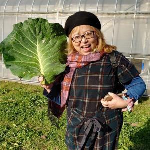 無農薬野菜のオトシアナ