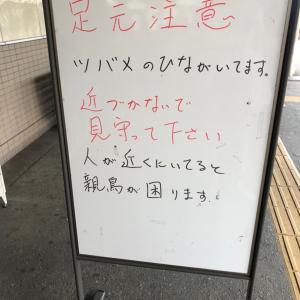 阪急箕面駅の駅員さんの優しさに触れる