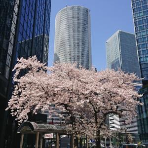 名古屋から、東京へ