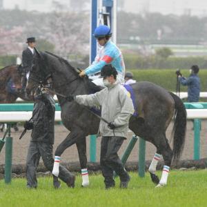 【オークス】出資馬は2着、4着。人気以上に頑張ってくれました。