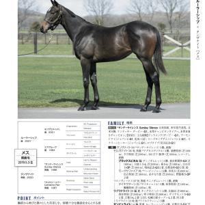 【サンデーR】2020年度・第1次募集申し込み馬