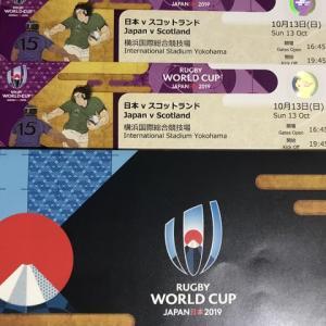 ラグビーW杯日本、決戦を目前にして想うこと