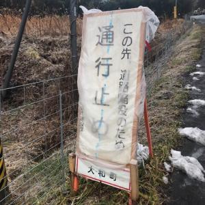 通行止め解消していない、雪の残る里山トレイル(笹倉山506m)