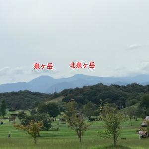 泉ヶ岳トレイル:レースプラン完璧です!