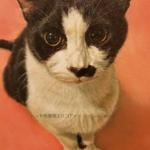 完成 八割れネコ ロビンちゃんの肖像画