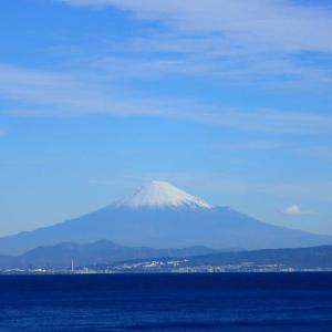 富士山みてきた