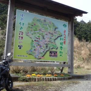 20/03  川根~静岡 ミニツーリング