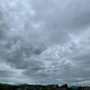 梅雨入り❗️