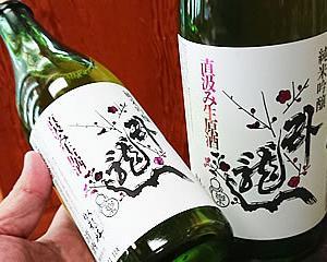【新発売】臥龍梅の直汲み生原酒、新酒で早速入荷だ!