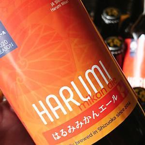 【速報】静岡のみかんを使ったみかんビール入荷♪