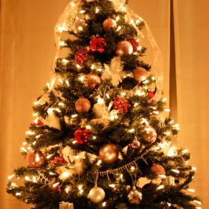 今年は、温故知新なクリスマス