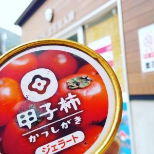 きのうのおやつ  甲子柿ジェラート