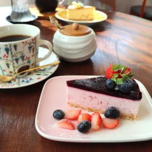 苺とブルーベリーのレアチーズケーキ:cafe kielo(田舎館村)
