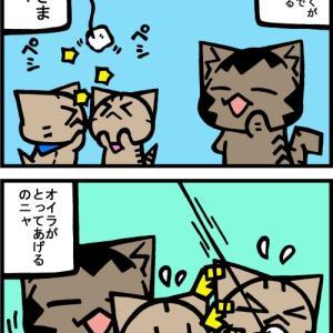 チビタマ日記 その2089
