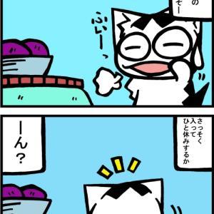チビタマ日記 その2197