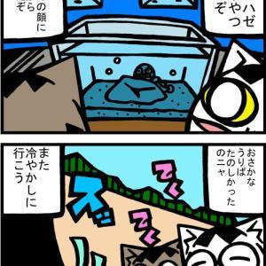 チビタマ日記 その2060