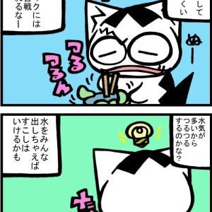 チビタマ日記 その2063