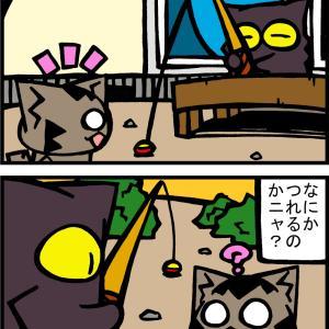 チビタマ日記 その2078